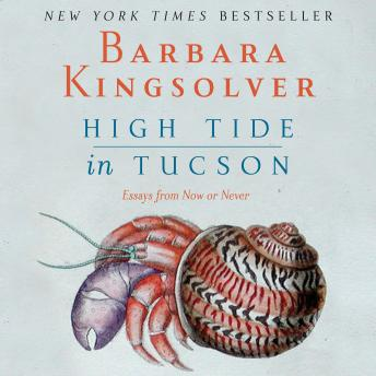High Tide in Tucson � Essays from Now or Never