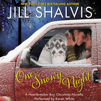 One Snowy Night by  Jill Shalvis