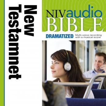 NIV New Testament Audio Bible, Dramatized