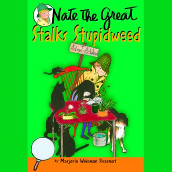 Nate the Great Stalks Stupidweed Audiobook Mp3 Download Free