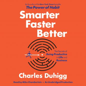 Download Smarter Faster Better: The Secrets of Being Productive in Life and Business by Charles Duhigg