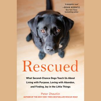 Download Rescued: What Second-Chance Dogs Teach Us About Living with Purpose, Loving with Abandon, and Finding Joy in the Little Things by Peter Zheutlin