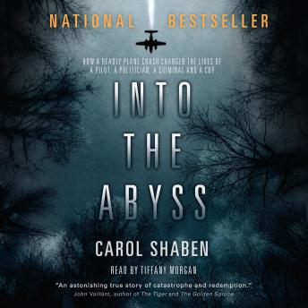 Download Into the Abyss: How a Deadly Plane Crash Changed the Lives of a Pilot, a Politician, a Criminal and a Cop by Carol Shaben