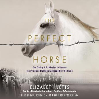 Download Perfect Horse: The Daring U.S. Mission to Rescue the Priceless Stallions Kidnapped by The Nazis by Elizabeth Letts