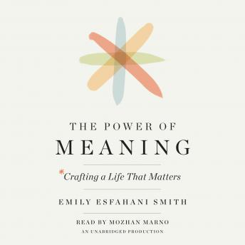 Download Power of Meaning: Crafting a Life That Matters by Emily Esfahani Smith