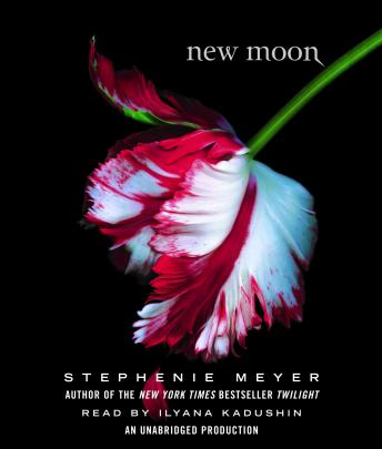 Download New Moon by Stephenie Meyer