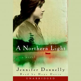 Download Northern Light by Jennifer Donnelly