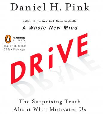 Download Drive: The Surprising Truth About What Motivates Us by Daniel H. Pink