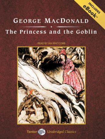 The princess and the goblin book