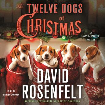 Download Twelve Dogs of Christmas: An Andy Carpenter Mystery by David Rosenfelt