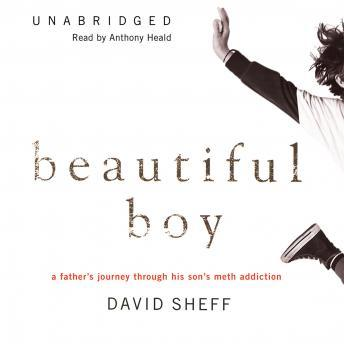 Download Beautiful Boy: A Father's Journey through His Son's Meth Addiction by David Sheff