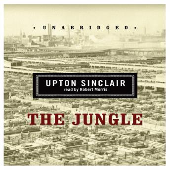 an analysis of upton sinclairs novel the jungle Upton sinclair's the jungle is a vivid portrait of life and death in a turn-of-the-century american meat-packing factory arguments, or qualities of the book, and i must support my analysis with examples from the book could any one please help :idea::rolleyes5.