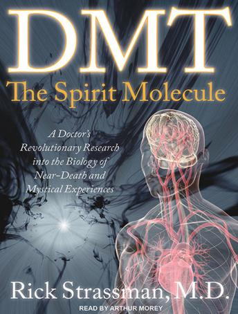 Download DMT: The Spirit Molecule: A Doctor's Revolutionary Research into the Biology of Near-Death and Mystical Experiences by Rick Strassman