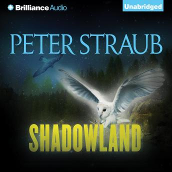 Download Shadowland by Peter Straub