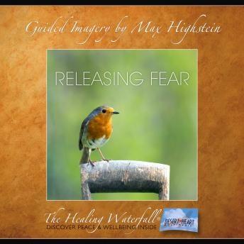 Download Releasing Fear by Max Highstein