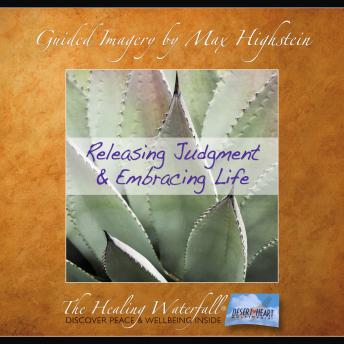 Download Releasing Judgement & Embracing Life by Max Highstein