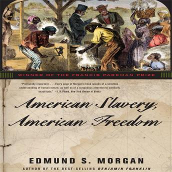 Slavery and Freedom: The American Paradox Essay