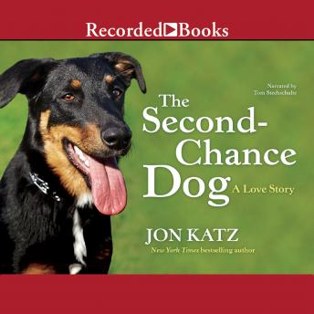 story second chance love