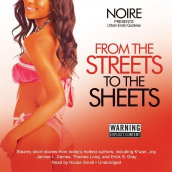 Download From the Streets to the Sheets: Urban Erotic Quickies by Noire