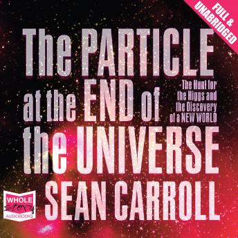 Download Particle at the End of the Universe by Sean Carroll