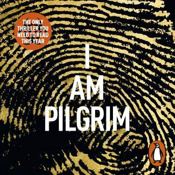 Download I Am Pilgrim by Terry Hayes