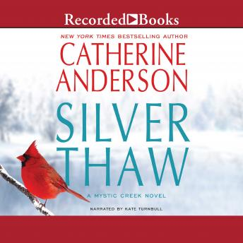 Download Silver Thaw by Catherine Anderson