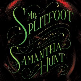 Mr. Splitfoot, Samantha Hunt