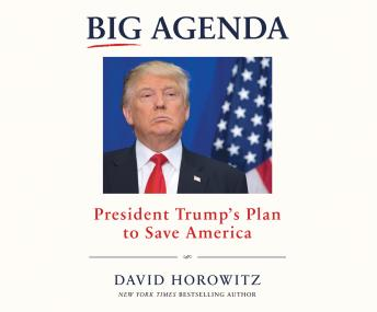 Download Big Agenda: President Trump's Plan to Save America by David Horowitz