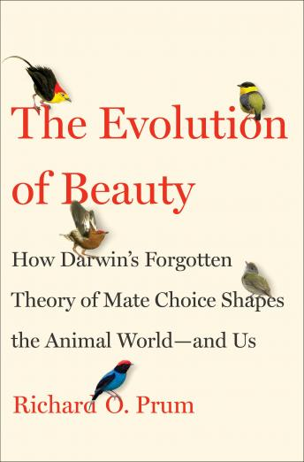 Download Evolution of Beauty: How Darwin's Forgotten Theory of Mate Choice Shapes the Animal World - and Us by Richard O. Prum