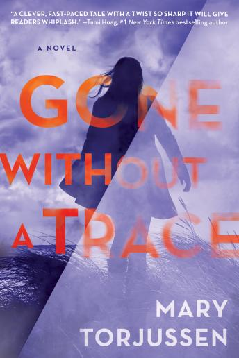 Download Gone Without a Trace by Mary Torjussen