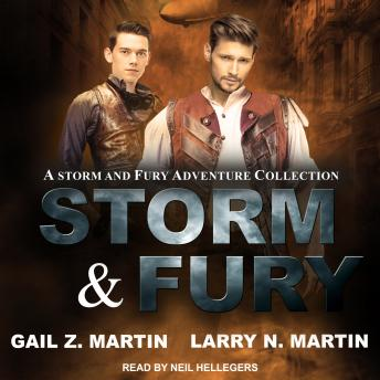 Download Storm & Fury: A Storm & Fury Adventures Collection by Gail Z. Martin, Larry N. Martin Martin