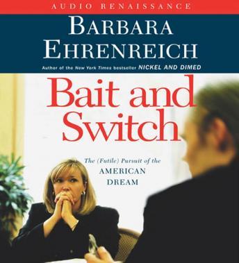 barbara ehrenreich nickel and dimed essay