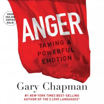 Anger: Handling a Powerful Emotion in a Healthy Way by  Gary Chapman