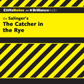 Download Catcher in the Rye by Stanley P. Baldwin