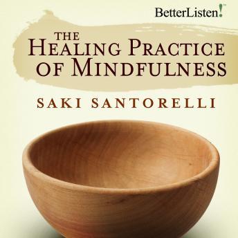 Healing Practice of Mindfulness by  Saki Santorelli
