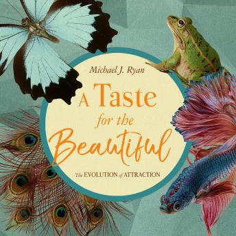 Taste for the Beautiful: The Evolution of Attraction, Audio book by Michael J. Ryan