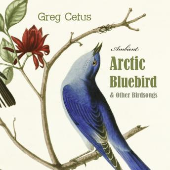 Download Arctic Bluebird and Other Birdsongs: Ambient Soundscape for Meditation (Natural World) by Greg Cetus