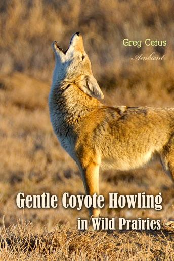 Download Gentle Coyote Howling in Wild Prairies (Natural World) by Greg Cetus