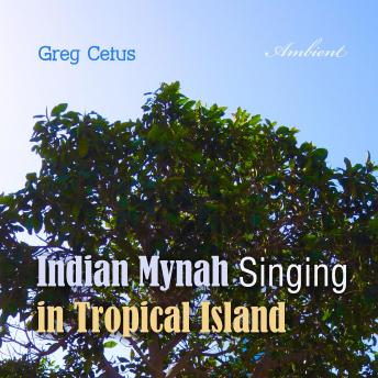 Download Indian Mynah Singing in Tropical Island (Natural World) by Greg Cetus