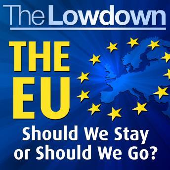 Lowdown The EU should we stay or should we go?