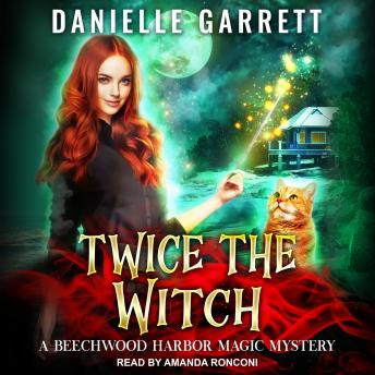 Download Twice the Witch by Danielle Garrett