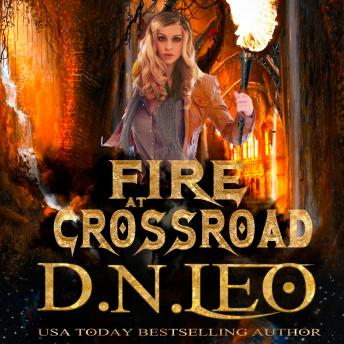 Download Fire at Crossroad by D.N. Leo