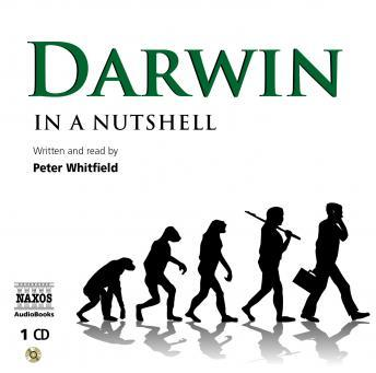 Download Darwin: In A Nutshell by Peter Whitfield