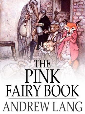 Pink Fairy Book
