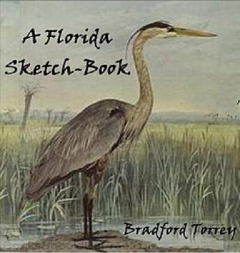 Florida Sketch-Book