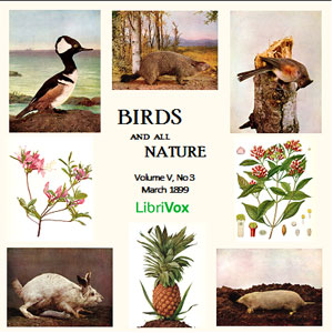 Birds and All Nature, Vol. V, No 3 March 1899