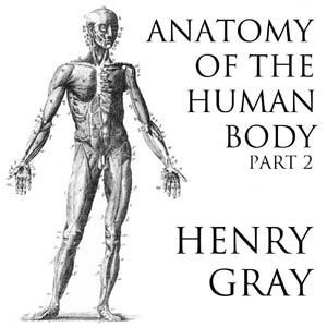 Anatomy of the Human Body, Part 2 by  Henry Grayson