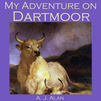 My Adventure on Dartmoor Audiobook Mp3 Download Free