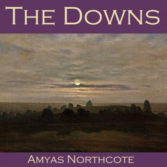 Αποτέλεσμα εικόνας για The Downs by Amyas Northcote
