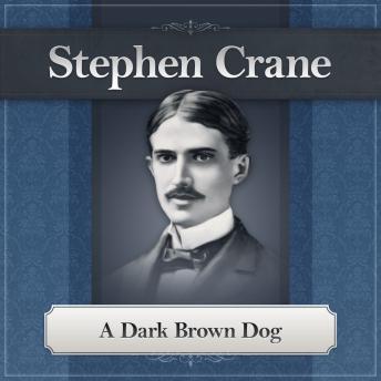 Dark Brown Dog: A Stephen Crane Story